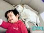 孩子太孤单 该不该养只宠物陪他长大?
